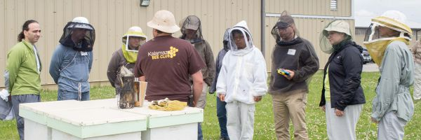 Participants around a hive during a workshop